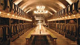 Seltene Weine – Wein Raritäten