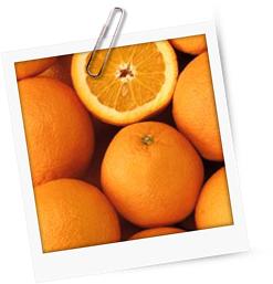 Canard à l'Orange an Rosmarinsauce