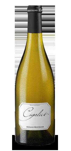 CIGALUS Blanc BIO** 2016 – FR-BIO-01