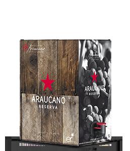LURTON Araucano Tinto 2016 – 5Liter