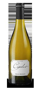 CIGALUS Blanc BIO** 2017 – FR-BIO-01